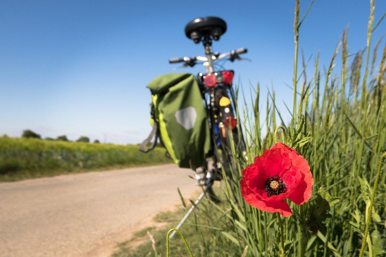 210216 Landschaft Fahrrad